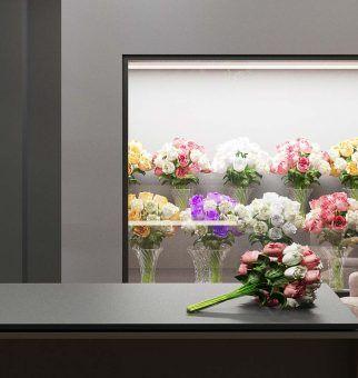 Цветочный салон IVY